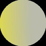 طوسی زرد